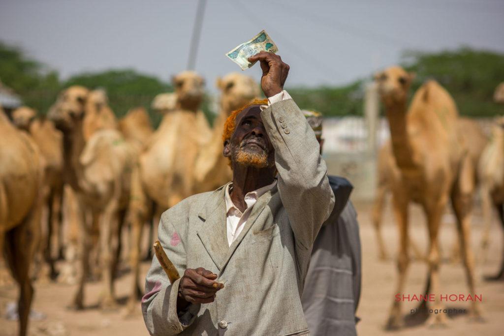 Camel trader in Hargeisa, Somaliland.