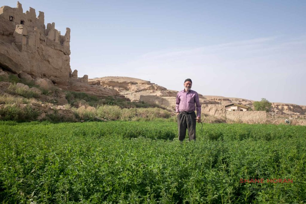 Farmer in Iran