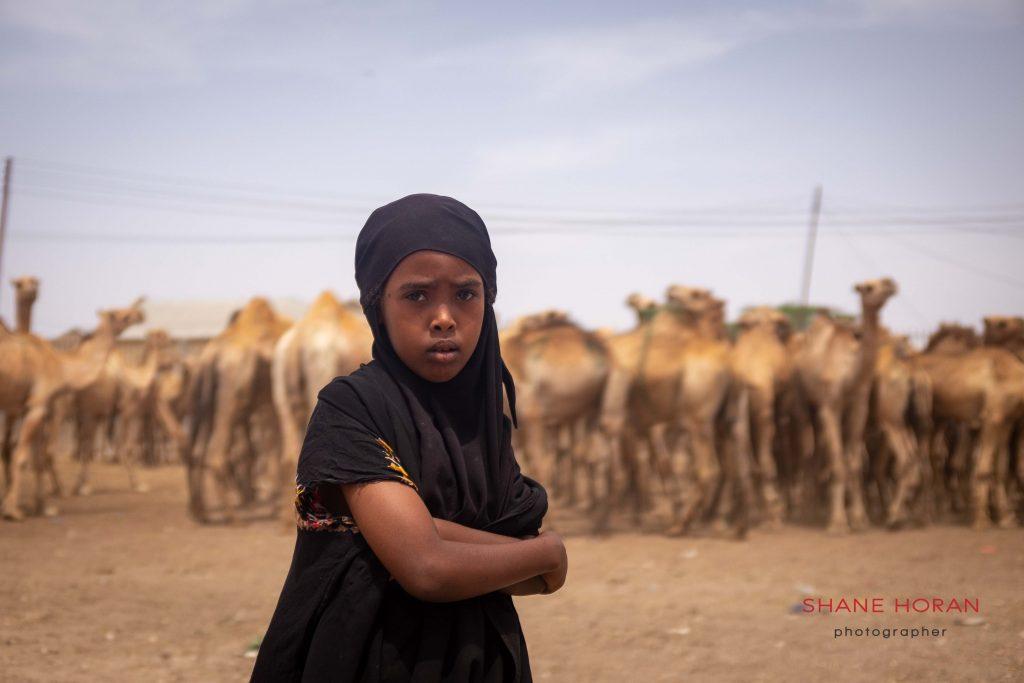 Somaliland camel market