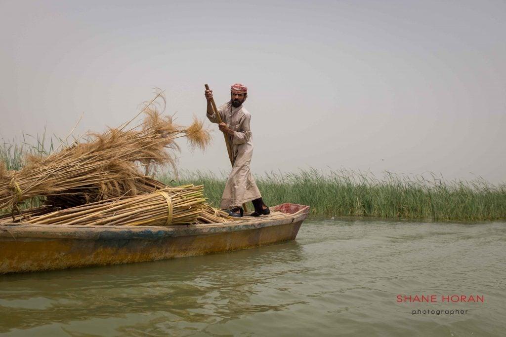 Boatman works the waterways, southern Iraqi marshlands.