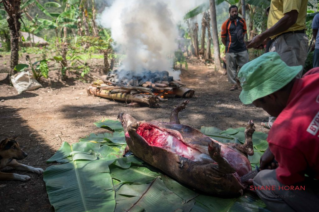 Skilled dissection, Papua New Guinea