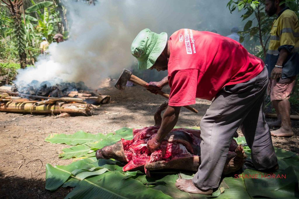 Butcher cuts open the fresh pig, Papua New Guinea