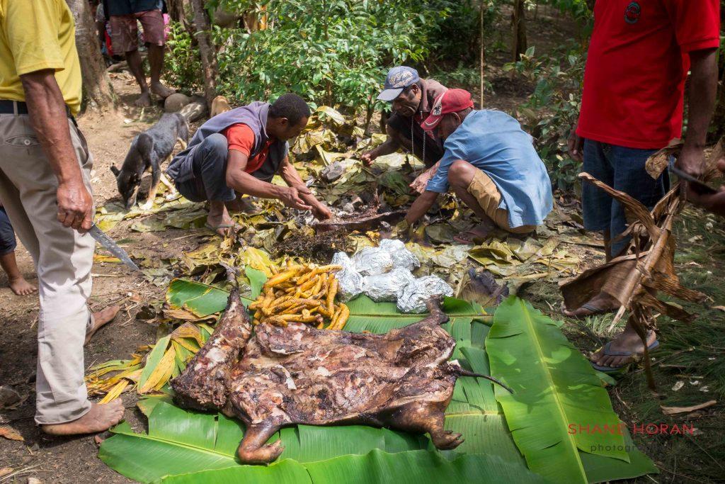 Roast pig post Mumu preparation ,Papua New Guinea
