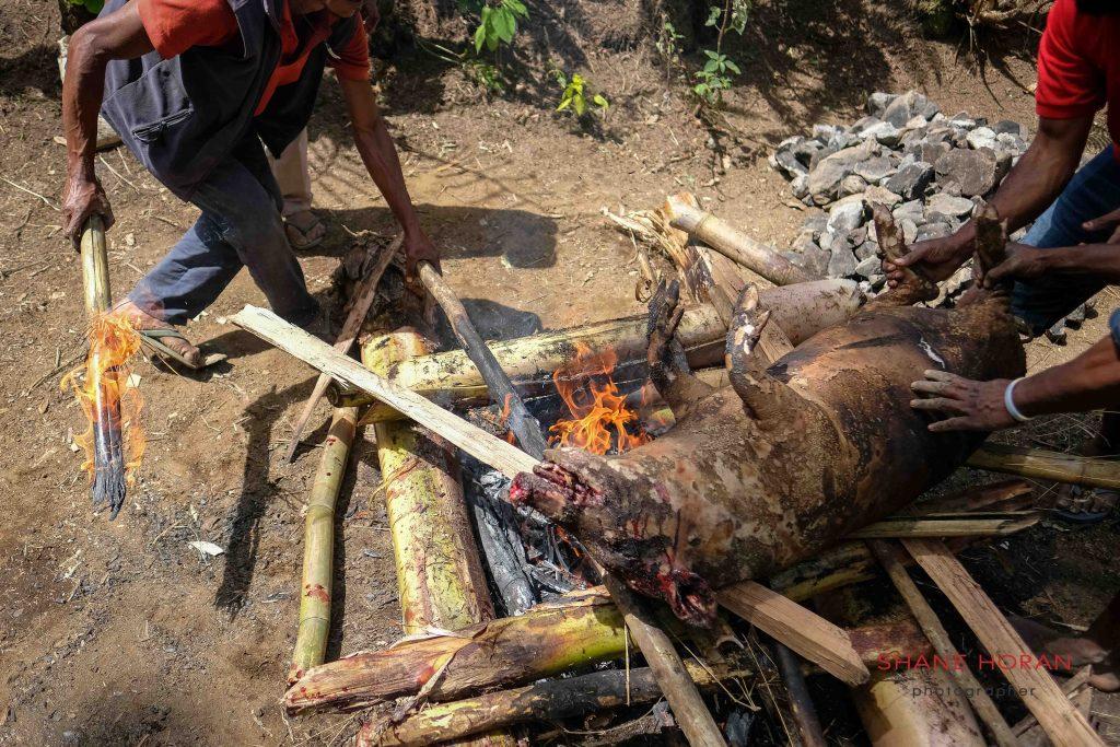 Roast pork, Papua New Guinea